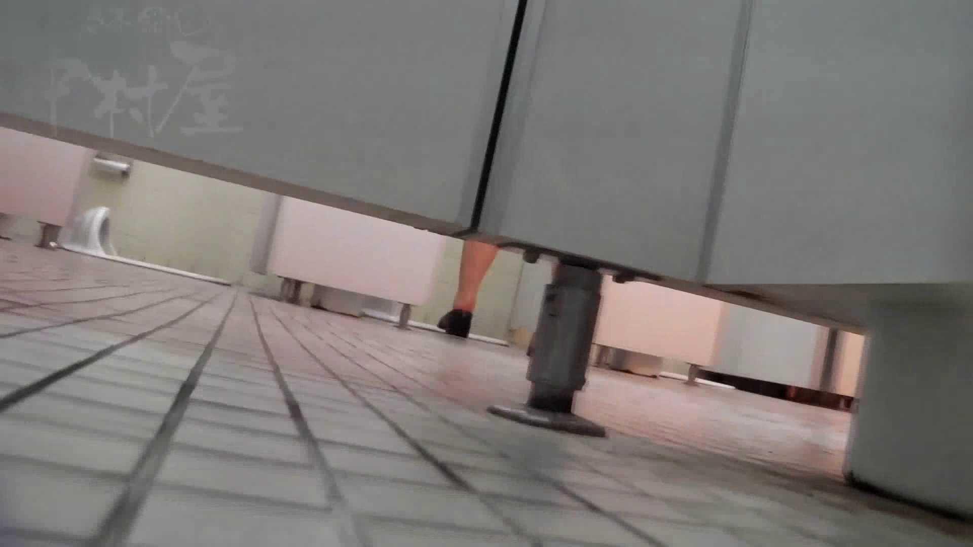 第三体育館潜入撮File024 最後の子公開残りは、SEIJUKU!! アスリート美女 ぱこり動画紹介 97連発 74