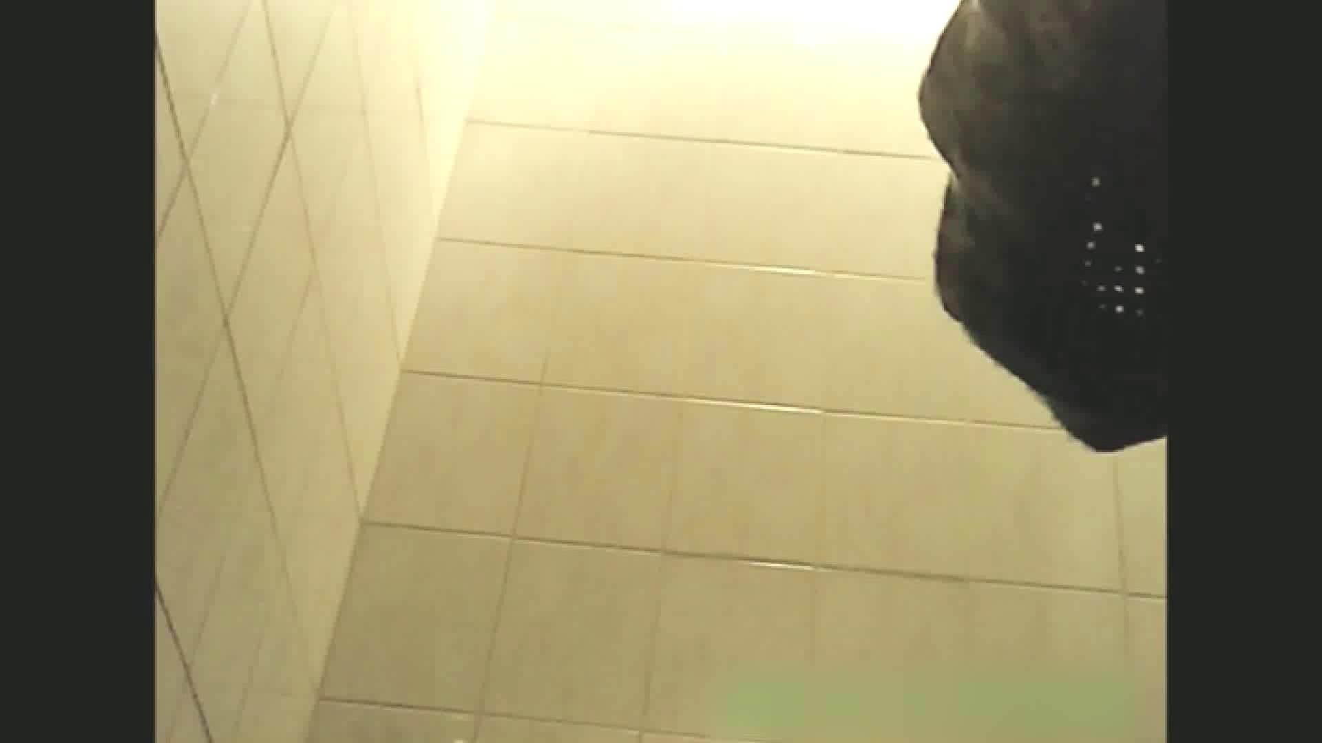 実録!!綺麗なお姉さんのトイレ事情・・・。vol.13 OLすけべ画像 盗撮動画紹介 36連発 2