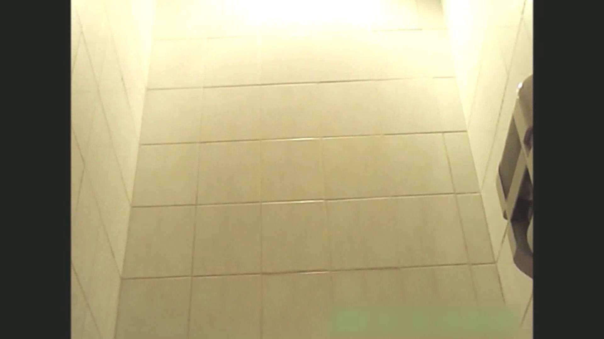 実録!!綺麗なお姉さんのトイレ事情・・・。vol.13 お姉さん   トイレ  36連発 13